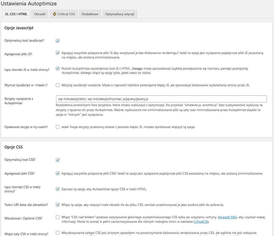 Autoptimize ustawienia JS i CSS